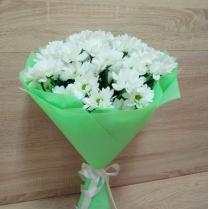 Букет ромашковой кустовой хризантемы (7 шт.)