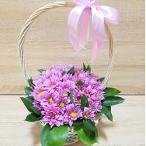 Корзина с нежно-розовой хризантемой и зеленью